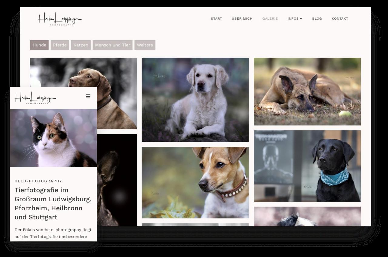 Webdesign Tierfotografie